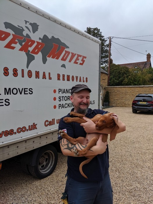 Moving with pets